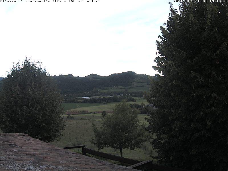 Webcam Oliveto (BO) - 198 m. slm